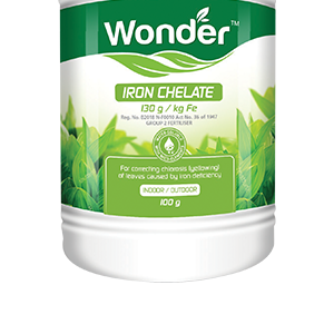 Wonder Iron Chelate