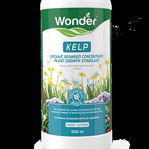 Wonder Kelp